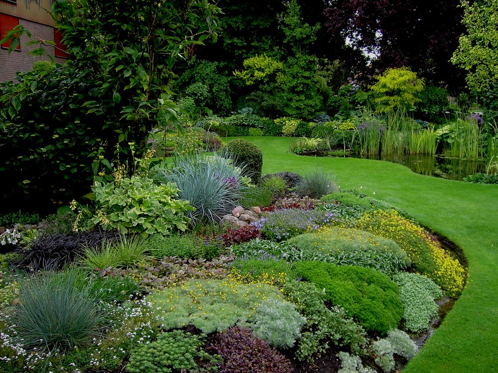 Wies Voestens Garden In The Netherlands Day 1 Gardeny Goodness