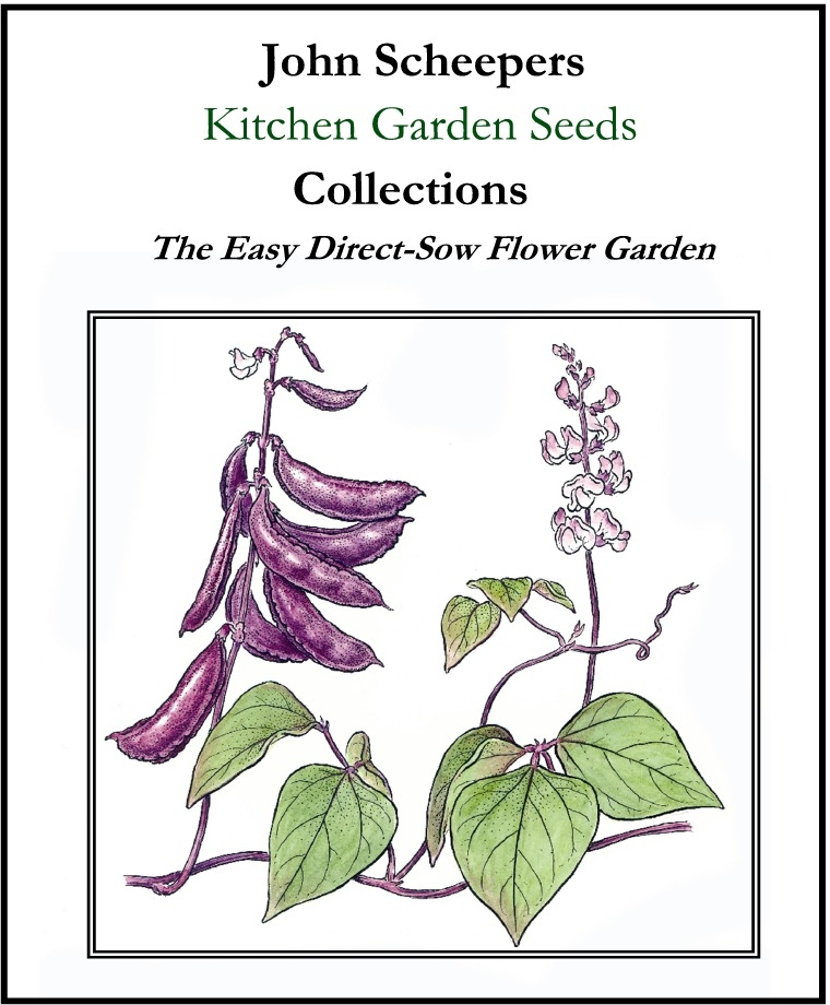 Shameless plug here, since I adore my new job! Our Kitchen Garden Seeds catalog is printing AS I TYPE THIS. I know, because I'm hanging out at the printing facility in Pennsylvania for a few days, helping to approve the proofs. SO FASCINATING!! I got to help edit the catalog this year as one of my first duties on the job, and it was so much fun. Anyway, I have a long list of seeds I'm going to try this spring, and most of them are ones that you can sow directly into the garden. This is a collection of easy self-sower flowers!