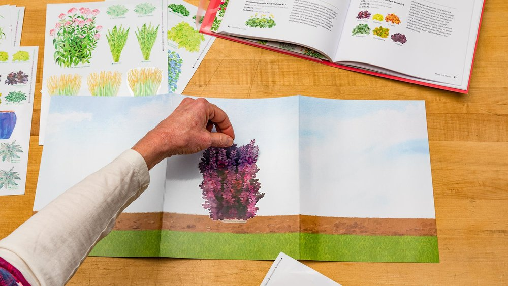 Use the stickers and the fold-out design board to visualize the perfect plant combinations for your yard.