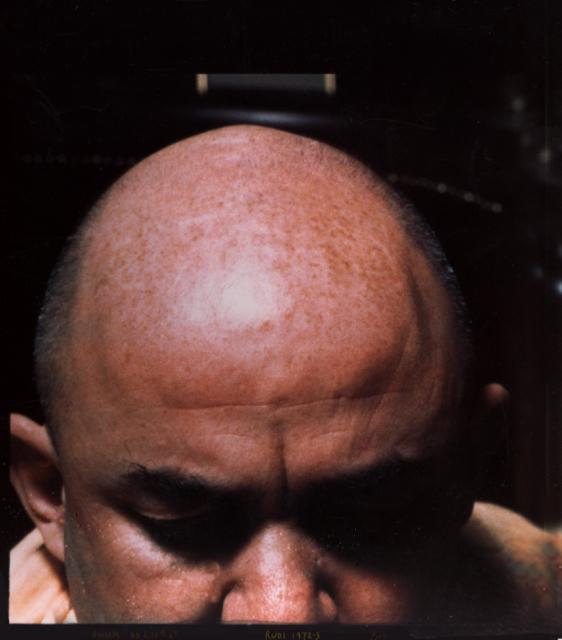 Swami Chetanananda's guru, Rudi