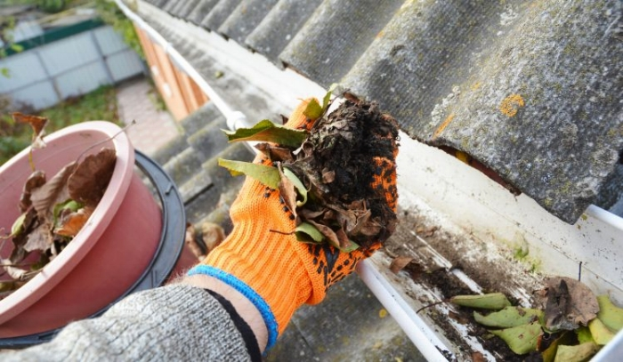 Clogged-Gutters-749x436.jpg
