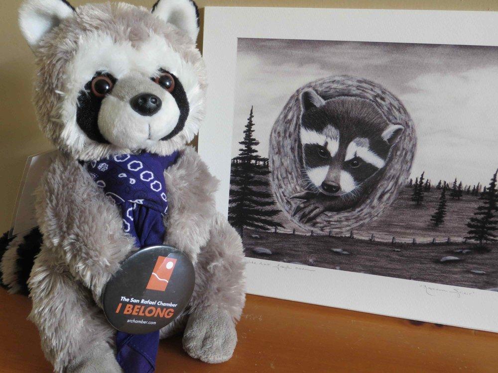 Raphael the Raccoon SRCOC Mascot with original drawing by Joseph Owen-016 - Copy.jpg