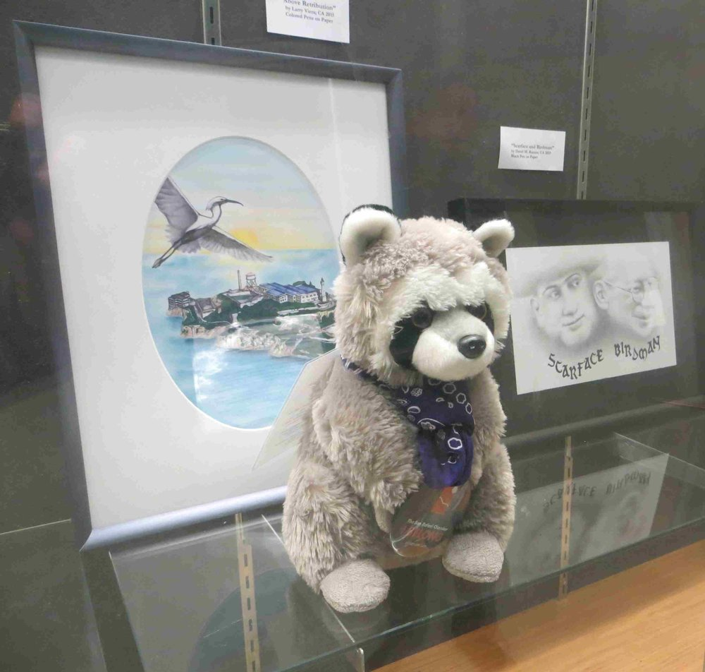 Raphael the raccoon at Woodside Probation center in SF-004 - Copy.jpg