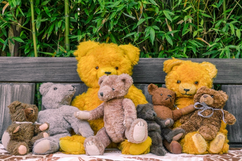 Teddy Bear family-Teddy Bear family.jpg
