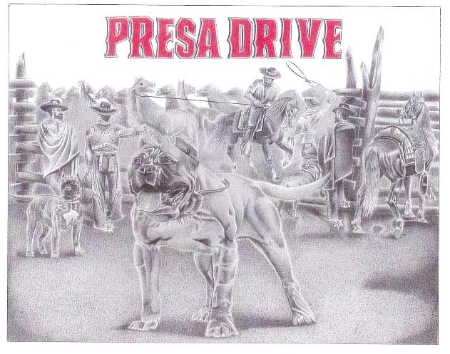 Presa Drive by Rogelio Reyes.jpg
