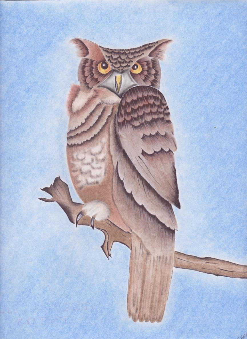 Owl by Josiah Barra 001ab.jpg