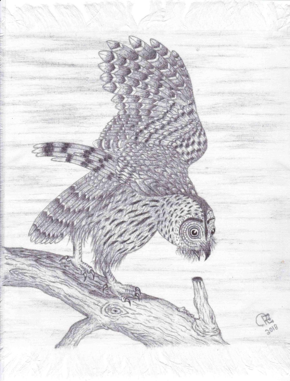 Owl by Roger Florida-Owl by Roger Florida-IMG_20181125_0001.jpg