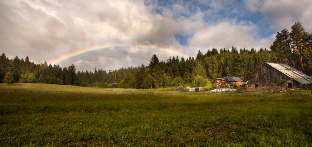 Willow-Witt Ranch Rainbow.jpg