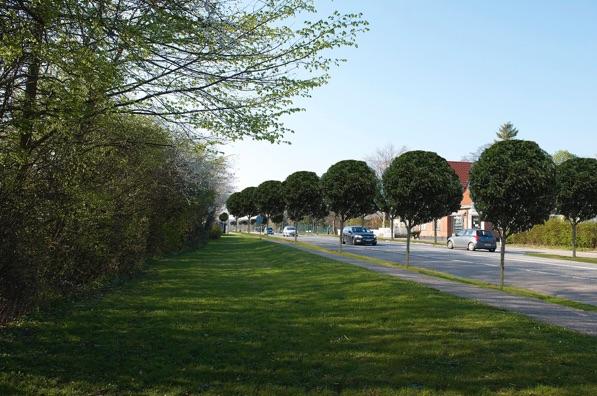 Først var det Blovstrød-hallen, der fik sparekniven -nu er det Kong  vejens tur! Fotomanipulation: AOB