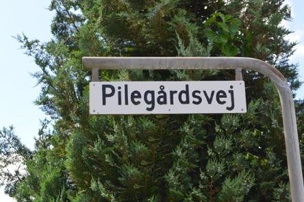 Villaejeren på Pilegårdsvej har været heldig, idet indbrudsforsøget mislykkedes. Foto: AOB
