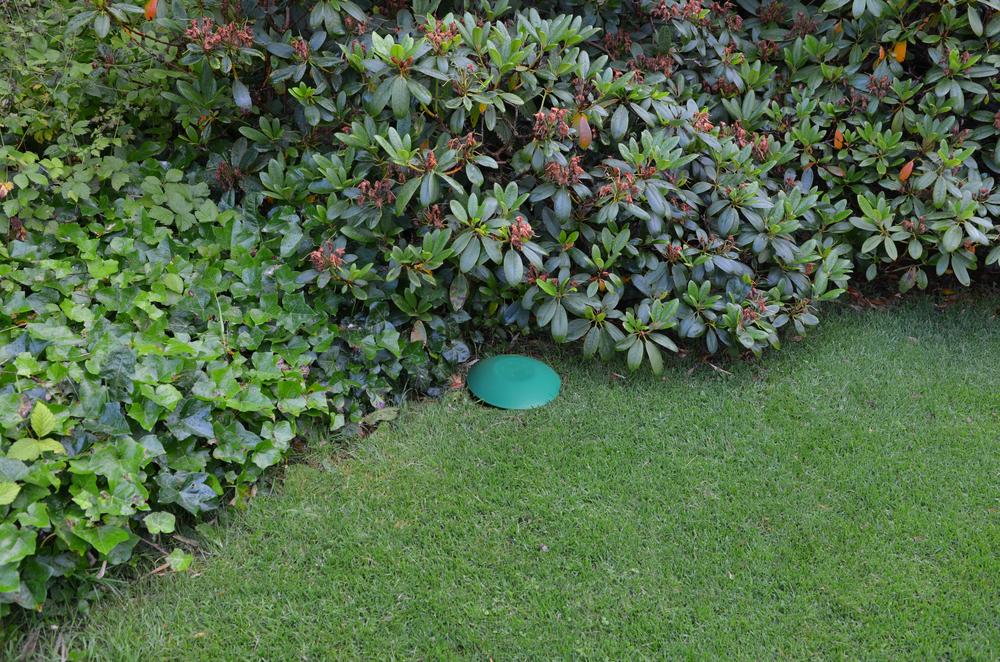 Fældens design - som synsmæssigt er en grøn paddehat – gør, at den glider naturlig ind i havens miljø. Foto:AOB