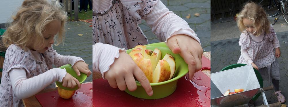 Traditionen tro er der efter høstgudstjenesten bl.a. æblepresning. Arkivfoto fra sidste år: AOB