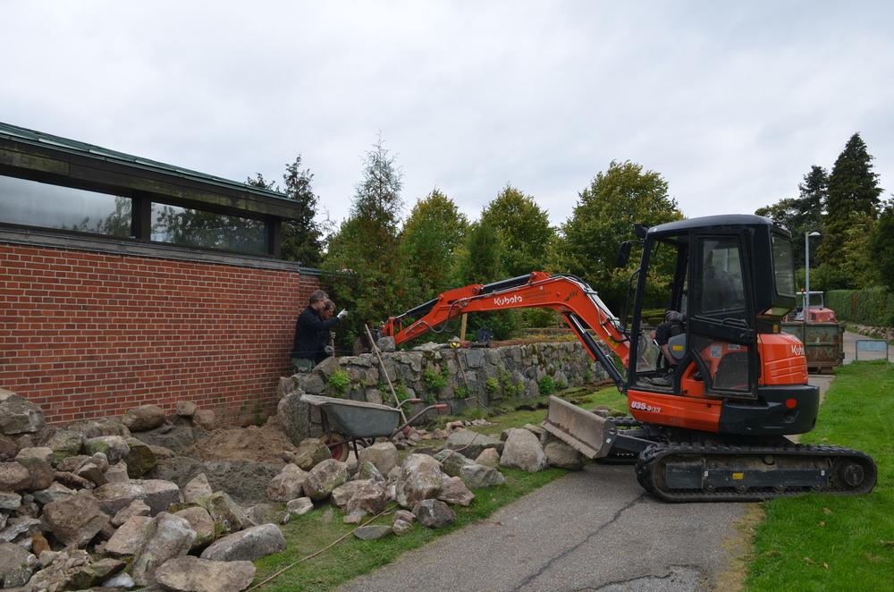 Stendiget langs Kapélvej er aldrig blevet renoveret. Dette bliver nu ved samme lejlighed gennemgået/genopbygget, og nogle af kampestenene fra Møllestien anvendes ved denne istandsættelse. Foto:AOB
