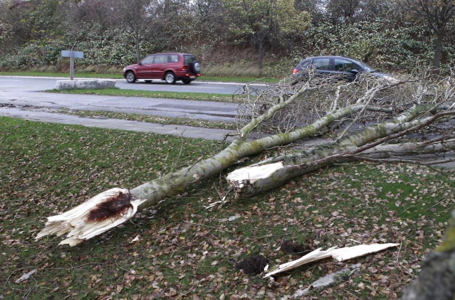 Der er tale om vindstød af orkanstyrke, når blæsten rammer 32 meter i sekundet, hvilket kan blive tilfældet