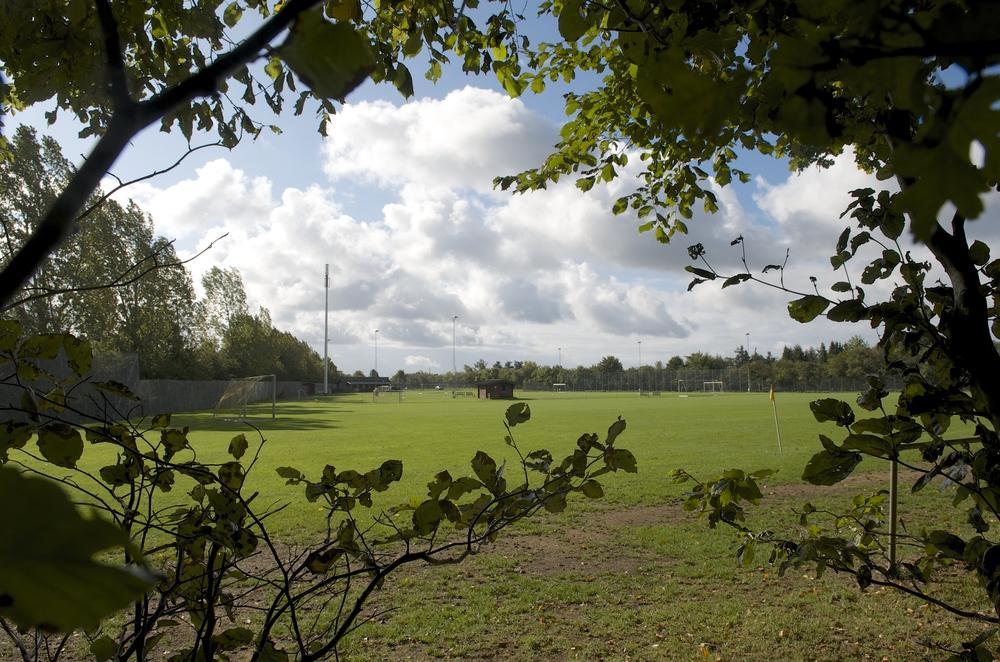 Den store grund på ca. 20.000 kvm., som ligger helt op til Tokkekøb Hegn, skal beplantes med træer og buske og skal formes som et 'spejderland'. Foto: AOB