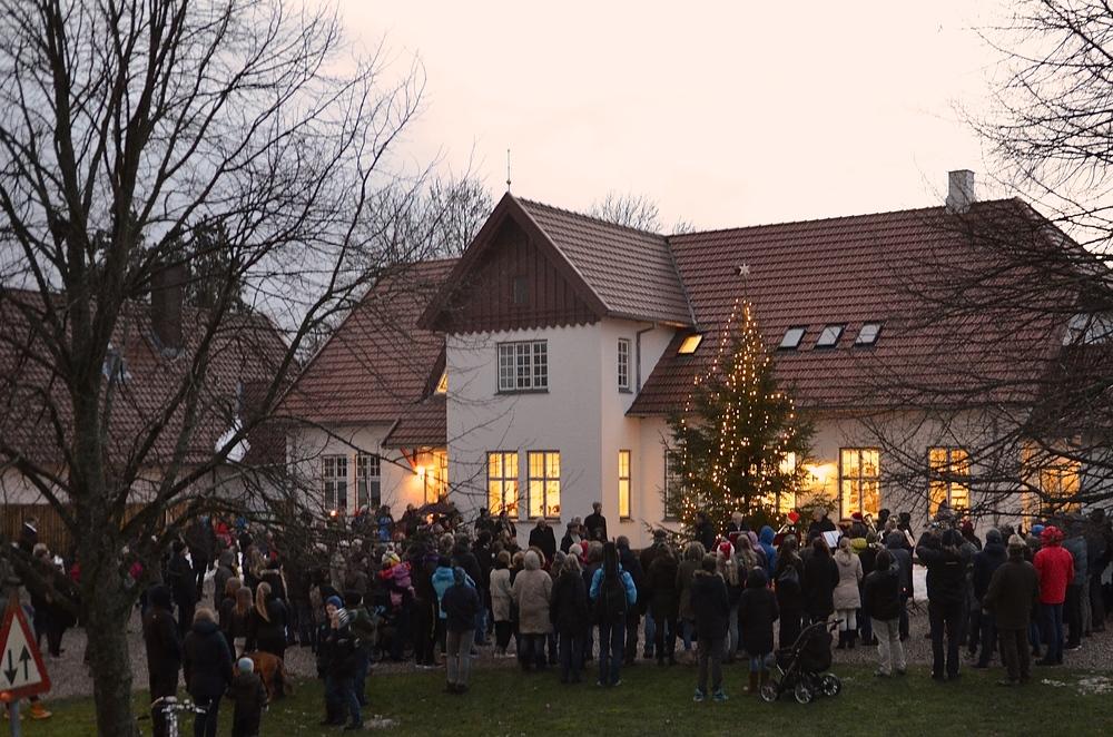 Det er sidste år, at juletræet placeres ud for sognegården. Til næste år flyttes det tilbage til sin 'gamle' plads foran kirken på parkeringspladsen. Fotos: AOB