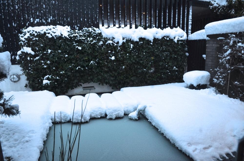 """""""Novembers sne os ramte"""". Foto: AOB"""