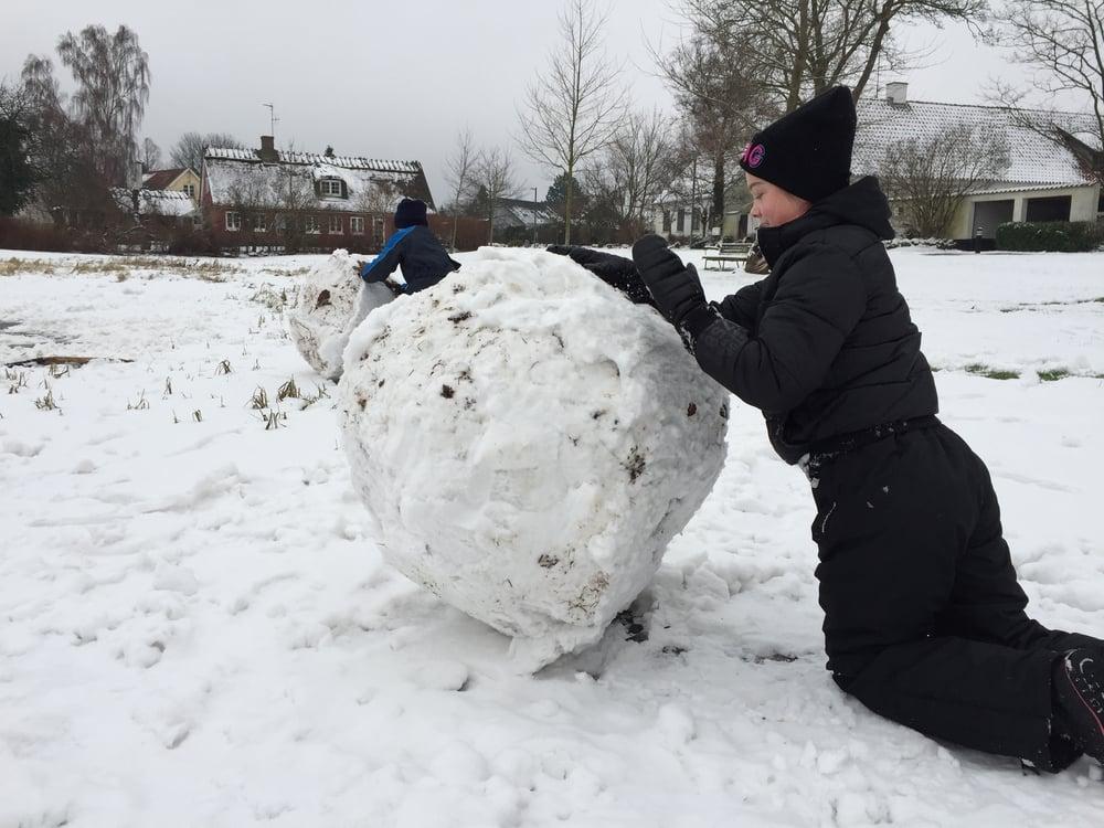 Det gik stærkt med at trille en snebold. Foto: AOB