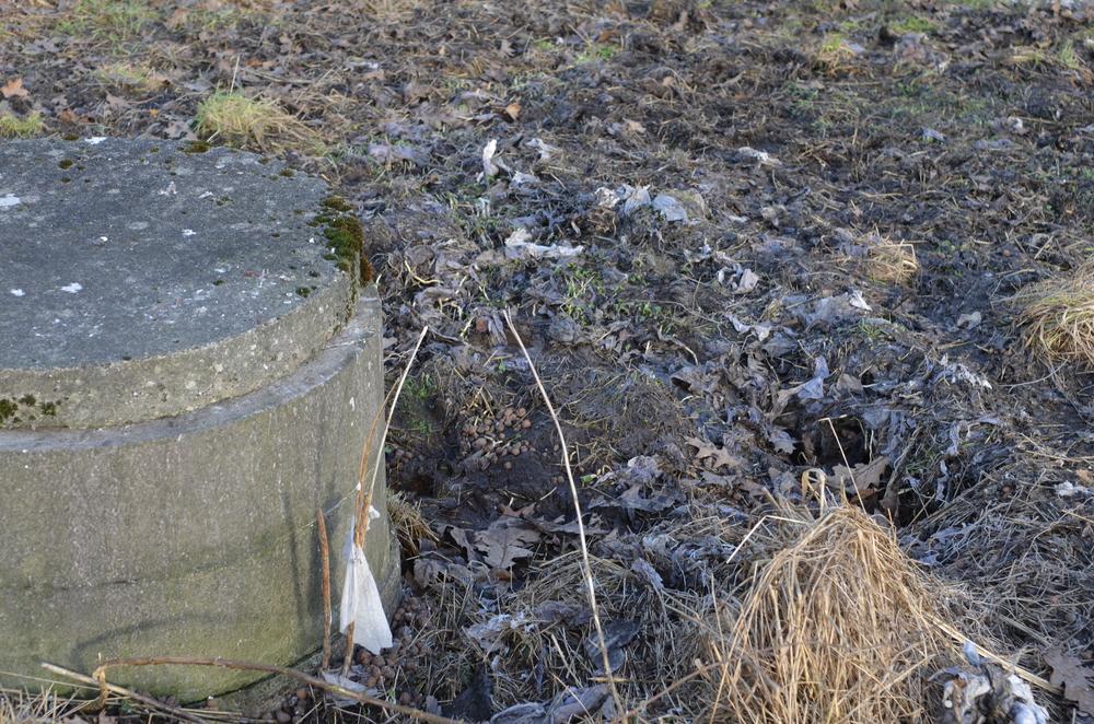 Det er denne brønd, som 'tømmer' kloakvand ud over stisystemet på Blovstrød-engen. Foto: AOB