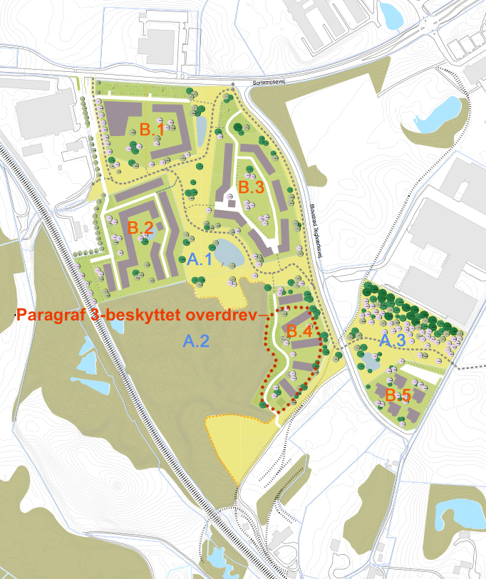 Som det fremgår af planen, ligger det meste af B.4-bebyggelsen direkte i det beskyttede overdrev. Tekster: AOB