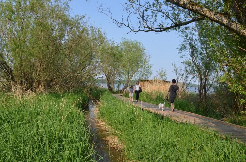 Langs åen er der anlagt en sidegangbro ud til et fugleskjul, som giver mulighed for bl.a. at studere søens fugle på nært hold uden at skræmme dem op.