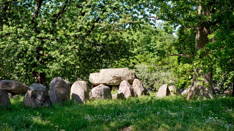 'Dæmpegårdsdyssen' kaldes også for 'Konge-dyssen'. Ikke fordi der er en fjern oldtidshøvding begravet, men fordi Kong Frederik VII deltog i udgravningen af langdyssen i 1860. Langdyssen kan dateres helt tilbage til 3.400 f.Kr.