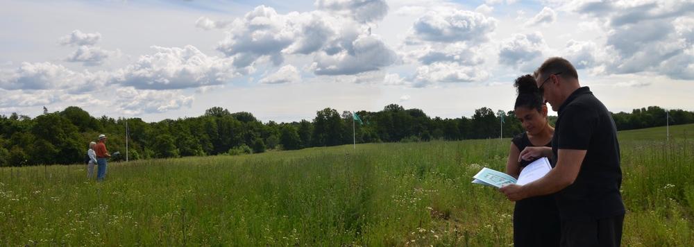 Bonava havde med med flag markeret i marken, hvor de forskellige boliger ville blive opført. Foto: AOB