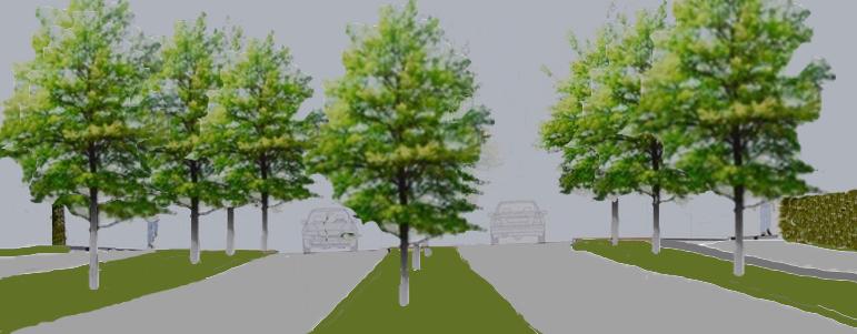 """Mange Blovstrød-borgere forstår ikke, hvorfor kommunen ændrer holdning og vil droppe den midterste række træer i """"Den grønne byport"""" på Kongevejen. De fremførte argumenter fra kommunens side holder ikke og er faktuelt ikke rigtige. Illustration: AOB"""