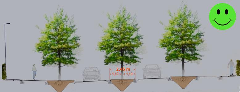 Der er masser af plads til træer på midterhellen. Hvis man regner med at træstammen på sigt maximalt bliver 25 cm i diameter, vil afstanden fra vejbanen og til kanten af træet være 1,10 meter - vejreglerne kræver min. 1 meter.Illustration:AOB