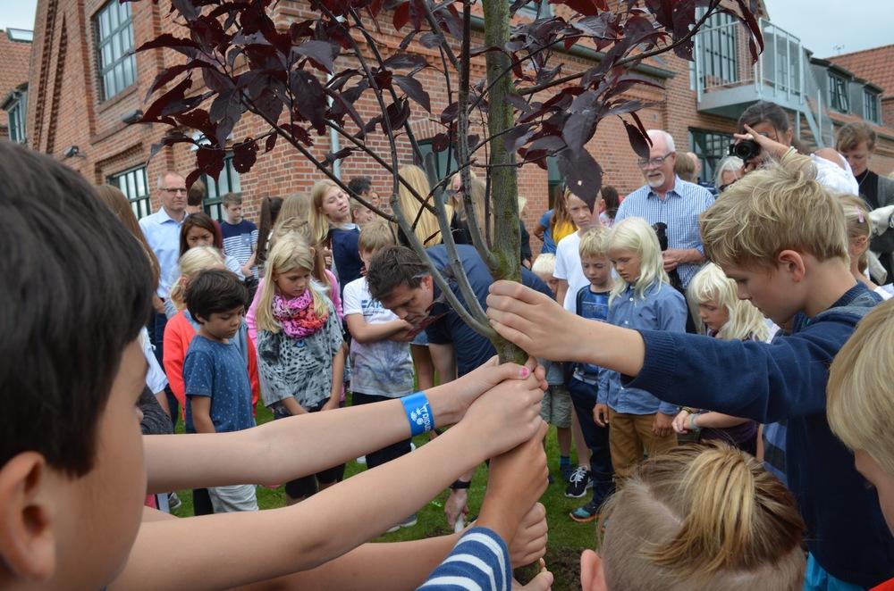 Alle ville sikre, at træet stod helt lige, mens Mikkel Kofod Løvenhøj sørgede for, at der kom godt med muldjord omkring rødderne. Foto: AOB
