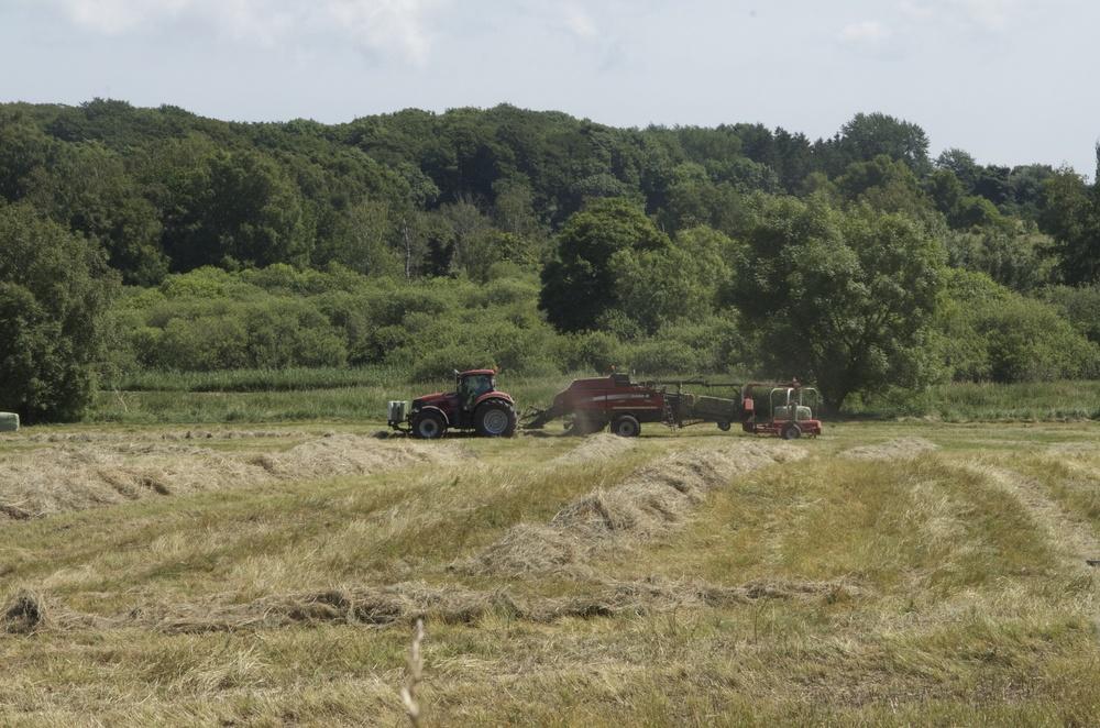 Bondemanden høster eng-græsset inden for få timer. Foto:AOB