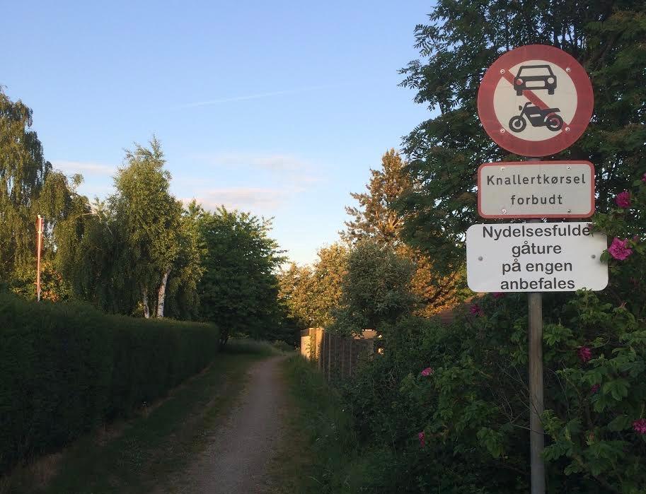 """En af vore læsere har sendt os dette foto med teksten: """"Stemningsbillede fra Parkvej"""". Foto: Thomas Rosenkilde"""