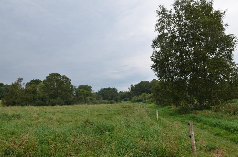 Der er mange muligheder for gåture på engen - her langs Drabækken. Foto: AOB