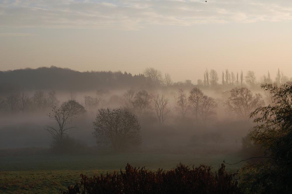 Tidlig om morgenen letter tågen. Foto. AOB