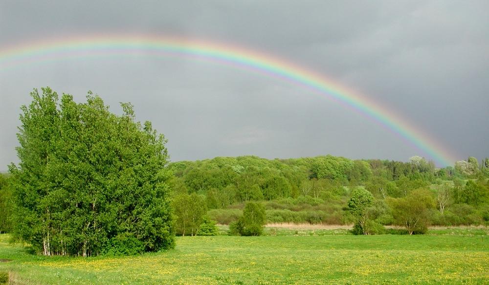 Med solen i ryggen og regn i forgrunden opstår dette optiske fænomen. Foto: AOB