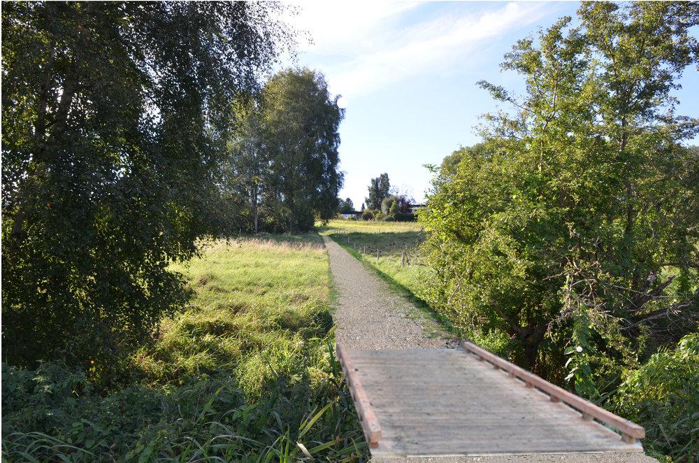 Senere i år: Naturstien løber fra Drabæksvej ned langs køernes indhegning til en lille træbro, der fører over Drabækken. Manipuleret foto: AOB