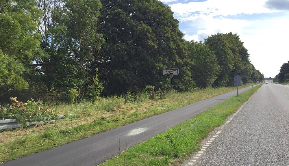 Nu har kommunen fældet et mindre træ, som totalt skyggede for skiltet med ophævelsen af 50 km/t. Nu kan man tydelig se, hvornår man forlader Blovstrød, når man køre mod syd.Foto:AOB