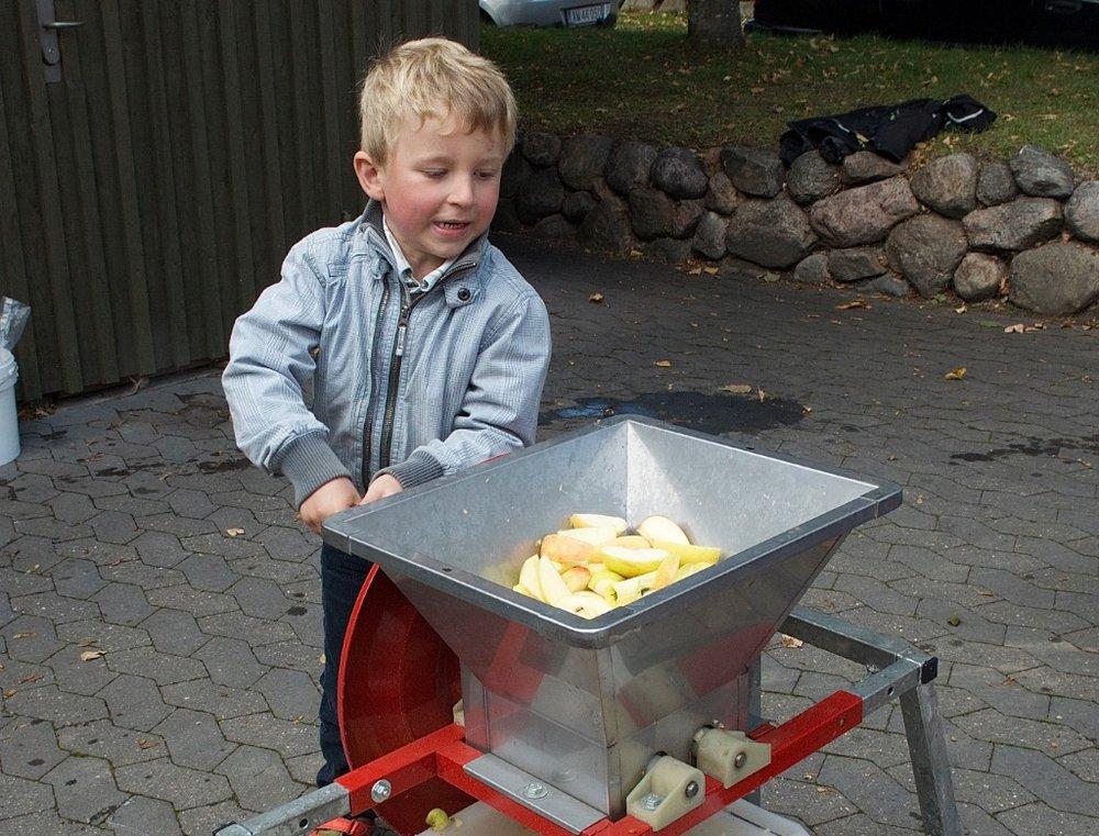 Der presses æbler til æblesaft ved sognegården - vel at mærke - hvis der kommer nok med æbler. Arkivfoto: AOB