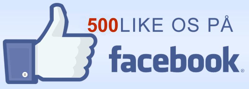 Den 6. april havde vi 400 læsere, som syntes godt om os,og på et halvt år har vi fået over 100 nye læsere, som har vendt tommelfingeren opad!