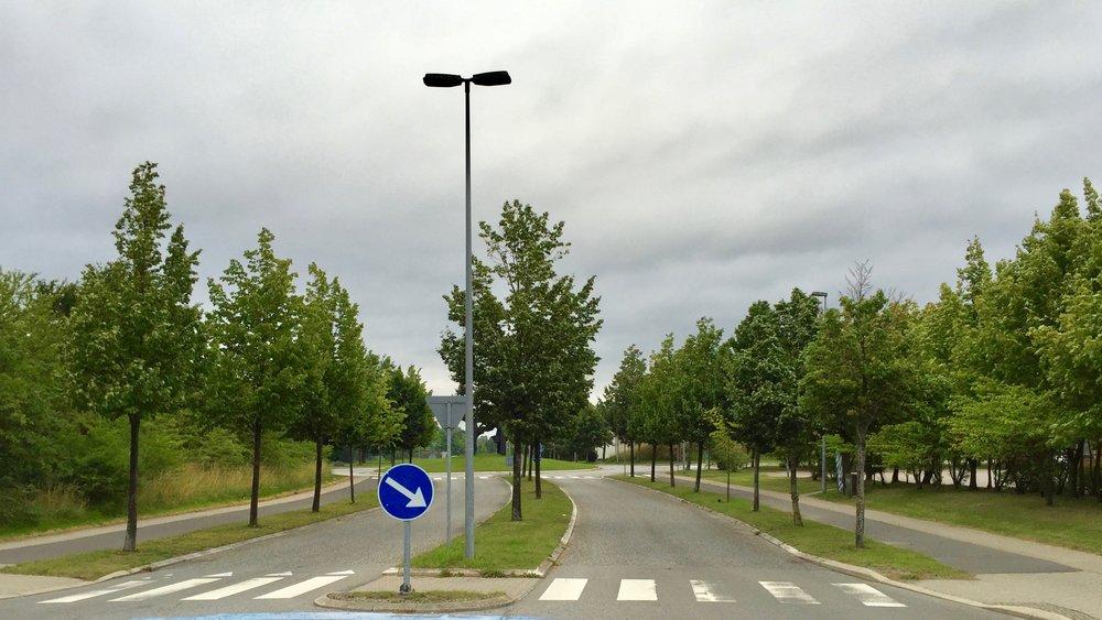 """""""Den Grønne Byport"""" i Blovstrød havde man forventet blev noget i retningen af den beplantning,som er udført ved Allerød Rådhus på Engholm Parkvej. Her lider midtertræerne ikke under dårlige vækstbetingelser - tvært imod.Foto: AOB"""