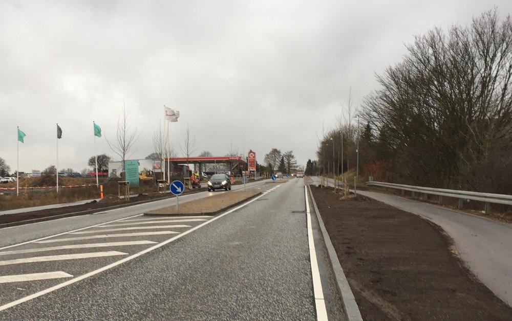 De nøgne platantræer ved byporten er nu på plads, men de syner ikke af ret meget. Foto: AOB