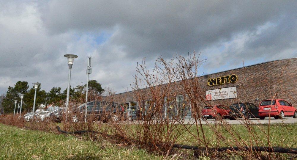Netto har nu for tredje gang plantet en hæk mellem parkeringspladsen og Kongevejen. Foto: AOB