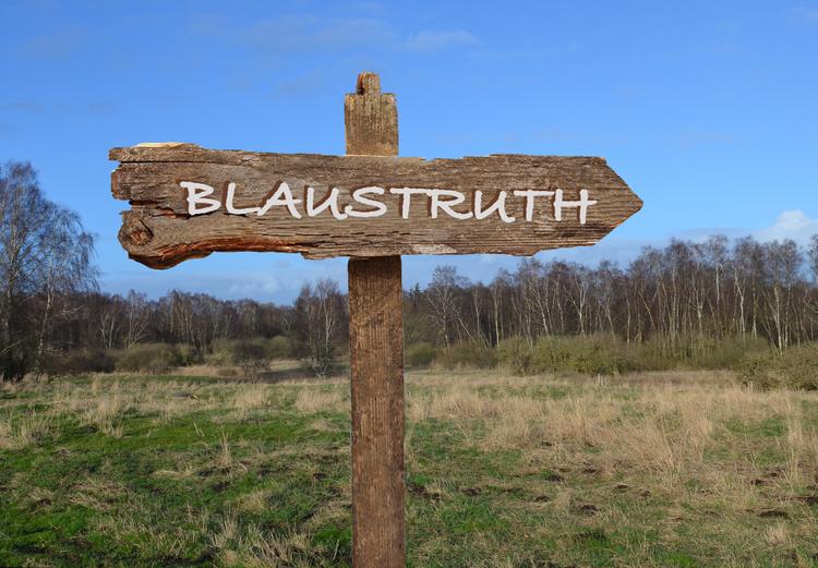 1. Spørgsmål: Er BLAUSTRUTH det oprindelige navn på Blovstrød?