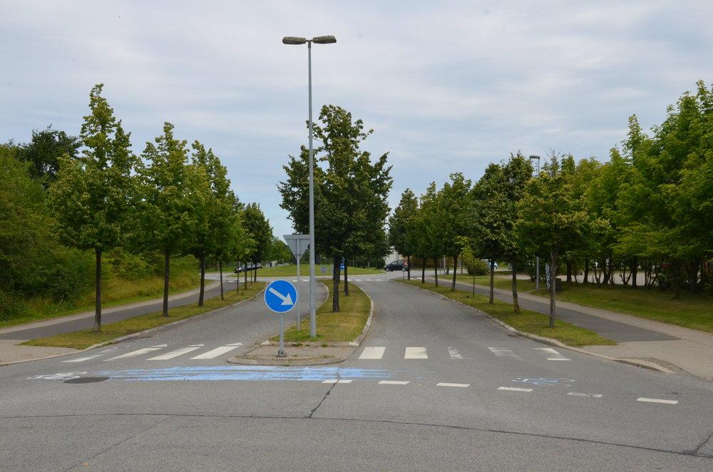 Billedet fra Engholm Parkvej er et godt eksempel på,hvor fint det kan gøres med også at placere træer i midterrabatten. Afstandsforholdene er de samme som ved Kongevejen, og som det ses, trives træerne i midterrabatten rigtig godt! I øvrigt er der en del af disse træer, som ikke overholder vejlovens afstandskrav. Foto:AOB
