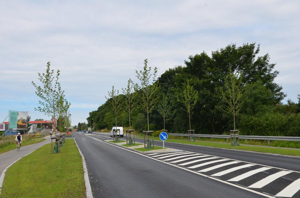 Der er rigelig med plads til 3 træer i midterrabatten, og det ville med tiden gøre byporten væsentlig mere markant. Fotomanipulation: AOB