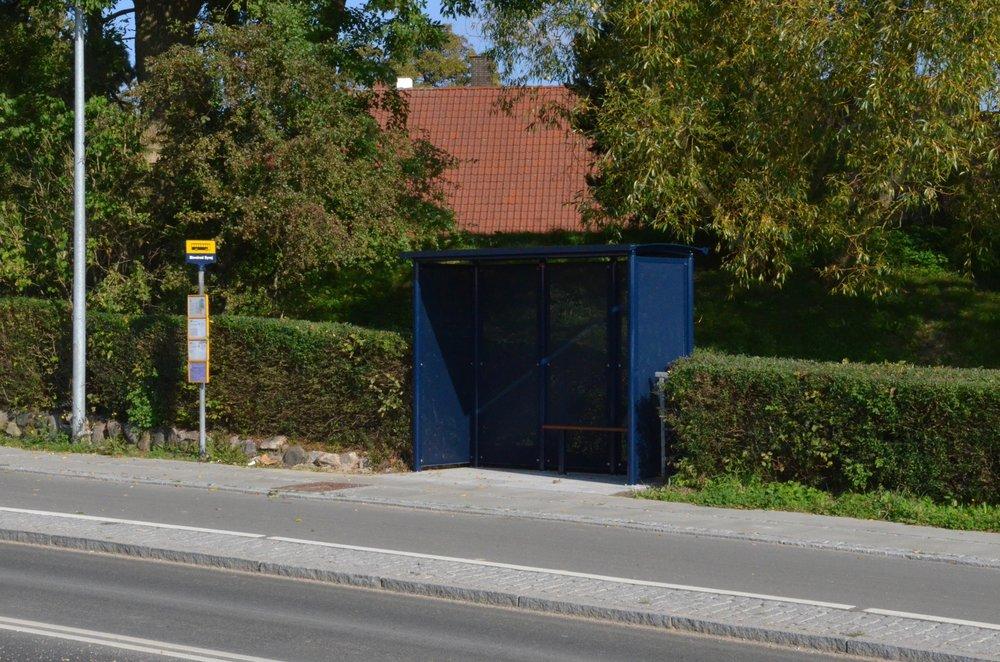 Medio september måned stod der pludselig et bus-læskur i hækken til præstegårdshaven. Dejligt - men hvornår mon der kommer et læskur på modsatte side af Kongevejen? Foto: AOB