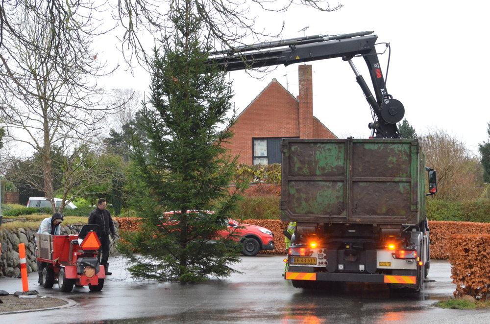 Børnene kunne fra sognegårdens vinduer  følge opsætningen af det store juletræ  på kirkepladsen, og som tændes nu på søndag. Foto: AOB
