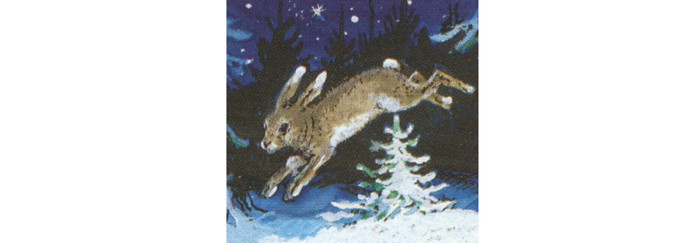 træ:hare***xx.jpg