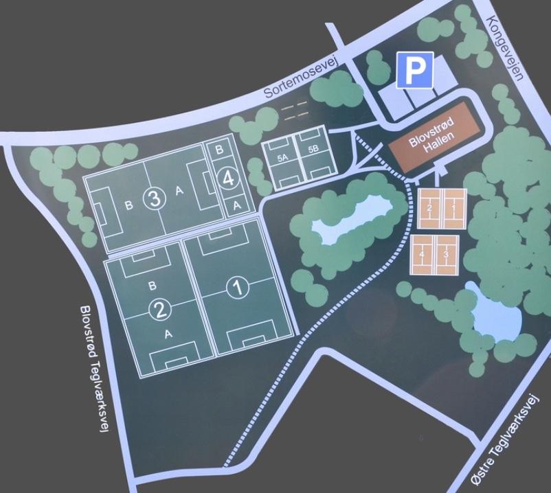 Udbygningen af Blovstrød med er større antal nye boliger i de kommende år, vil give behov udbygning af faciliteterne på Blovstrød Idrætsanlæg, og det kunne bl. a. være i form af: -Lokaler til foreningsfitness. -Flere baner til fodbold, muligvis vil behovet mest være i form af baner til 5- og 7-mands fodbold. -Faciliteter til parkour, rulleskøjter, BMX-cykelbane.