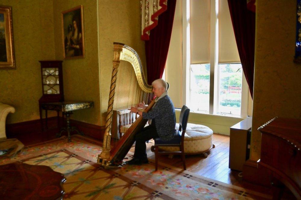 Helen Davies Mikkelborg er som harpenist særdeles vidtfavnende. I hendes omfattende musikalske karriere har hun kombineret orkesterstillinger som soloharpenist i både Irland og Skandinavien.